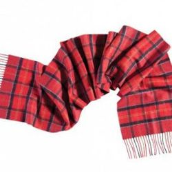 """<strong>Barbour Cashmere Tartan Scarf</strong> at North River Outfitter, <a href=""""http://www.northriveroutfitter.com/barbour-cashmere-tartan-scarf/"""">$154</a>"""