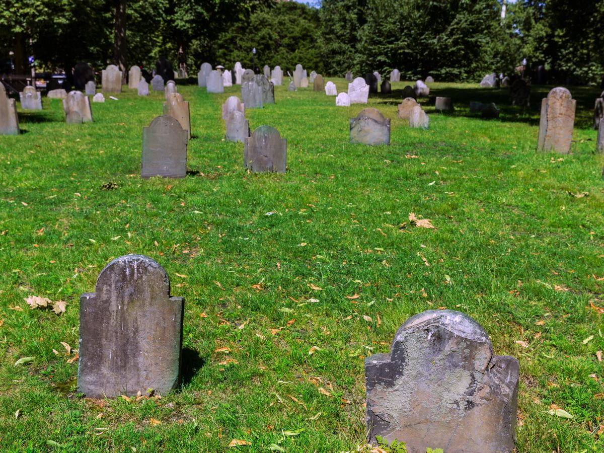 Sporadically placed headstones in a lush cemetery.