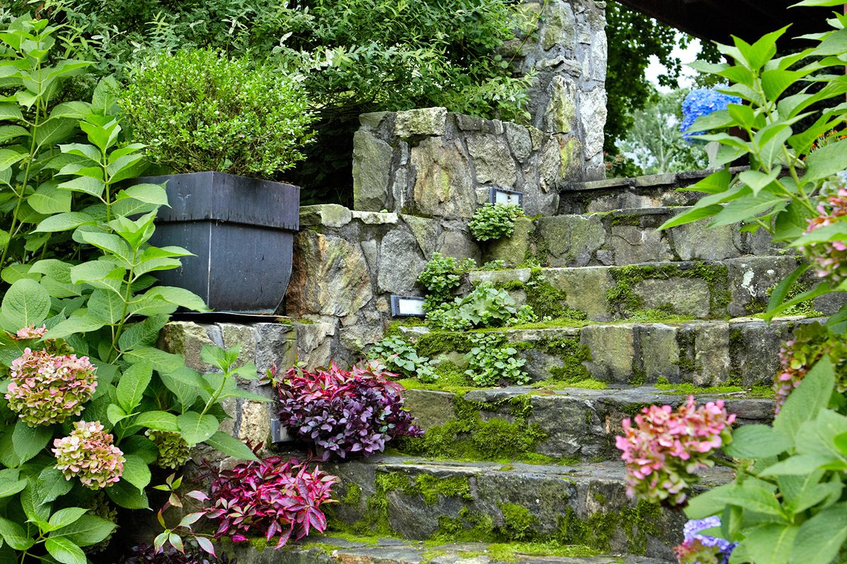 Hillside Steps Sloped Backyard Garden Stairs