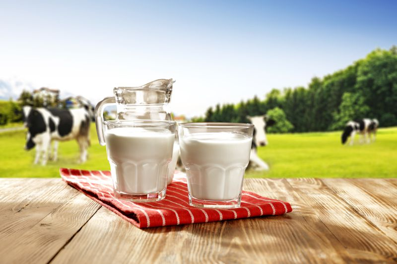 """Cowsshutterstock_619957136 """"Fake milk"""": why the dairy industry is boiling over plant-based milks"""