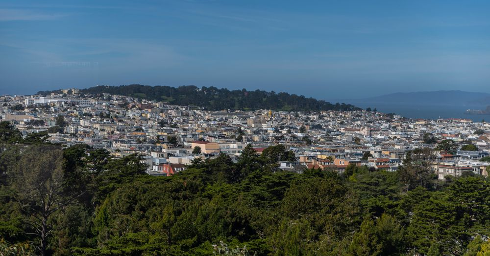 How many vacant homes does San Francisco really have?