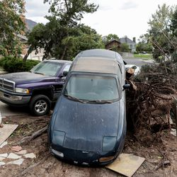 Andrea Behrman surveys the damage after her car was lifted by the roots of a fallen tree outside her house in Millcreek when severe winds struck the Wasatch Front on Tuesday, Sept. 8, 2020.