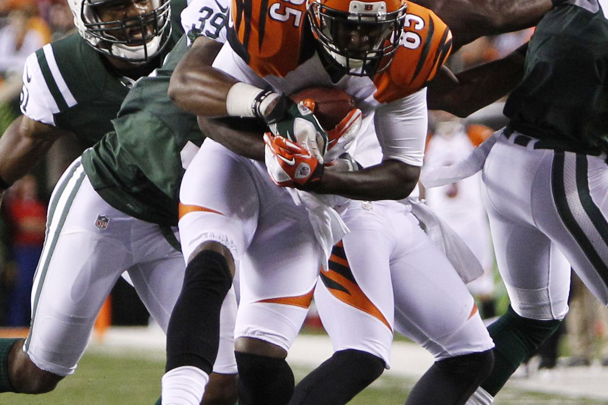 Aug 10, 2012; Cincinnati, OH, USA; Cincinnati Bengals wide receiver Armon Binns (85) makes a catch during the first half against New York Jets at Paul Brown Stadium. Mandatory Credit: Frank Victores-US PRESSWIRE