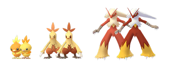 The Shiny forms for Torchic, Blaziken, and Combusken in Pokémon Go