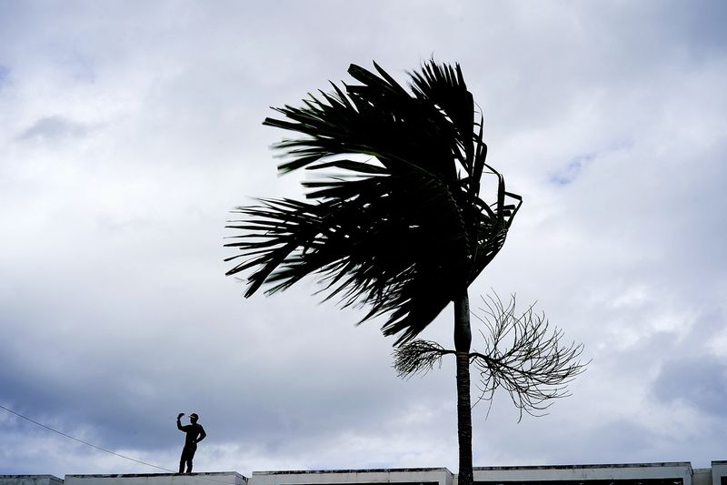 A man standing next to a palm tree.