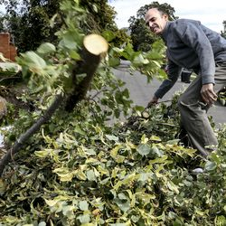Ted Biehn and Michel VanDam help clean up their neighbor's yard in Bountiful on Wednesday, Sept. 9, 2020. Tuesday's windstorm reached over 100 mph in certain areas and caused significant property damage.