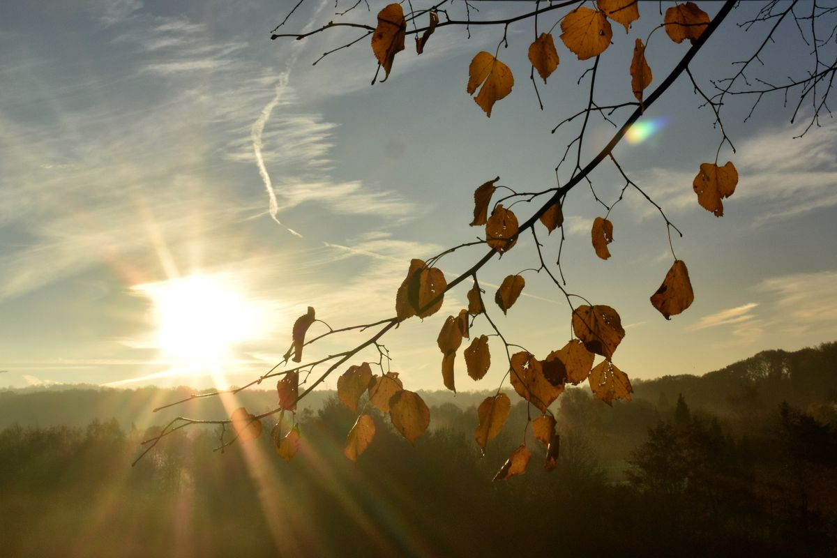 Autumn in North Rhine-Westphalia