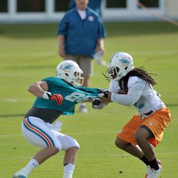 Jul 26, 2013; Davie, FL, USA; Miami Dolphins outside linebacker Philip Wheeler (52) pulls on the jersey of tight end Kyle Miller (86) during training camp at the Doctors Hospital Training Facility at Nova Southeastern University.