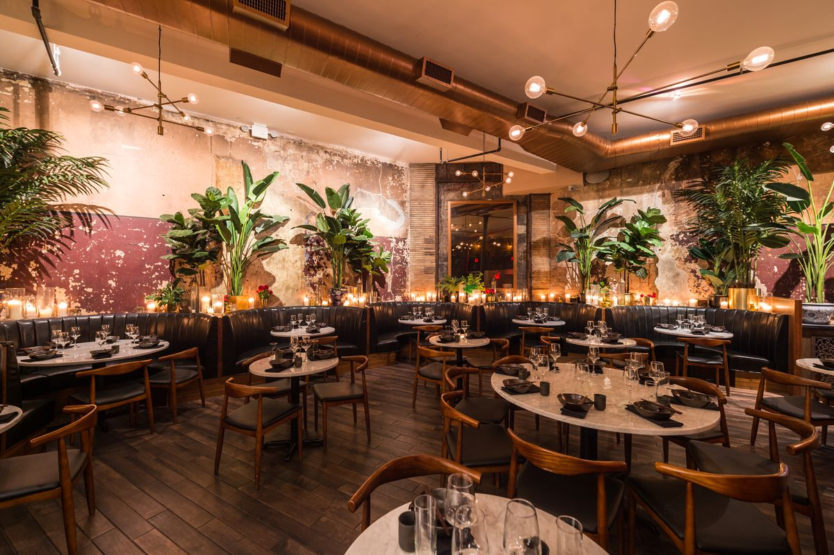Large, leafy plants surround the outer rim of Chinese Tuxedo's dimly lit dining room