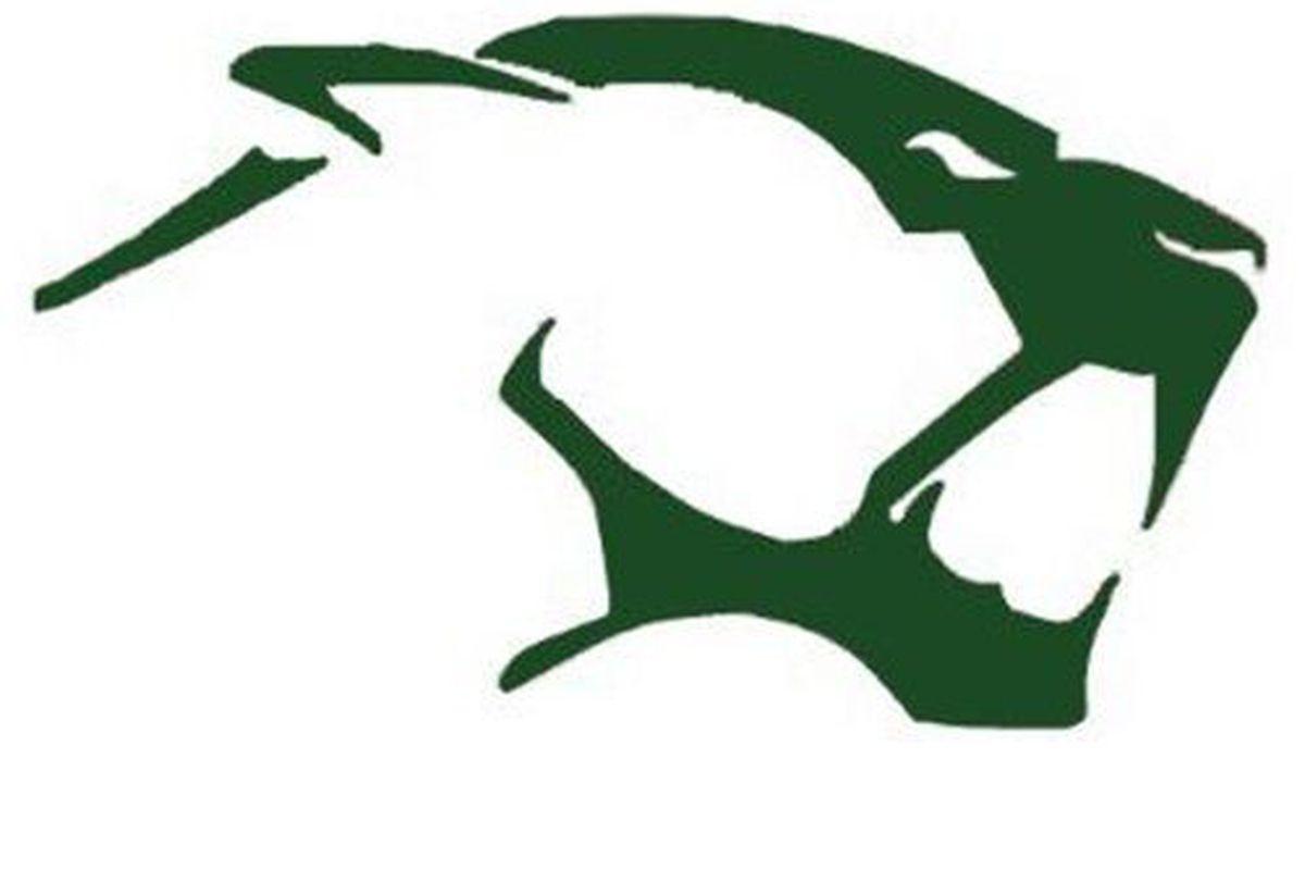 High school football: Big special teams plays propel Kearns Cougars past Box Elder Bees in opener