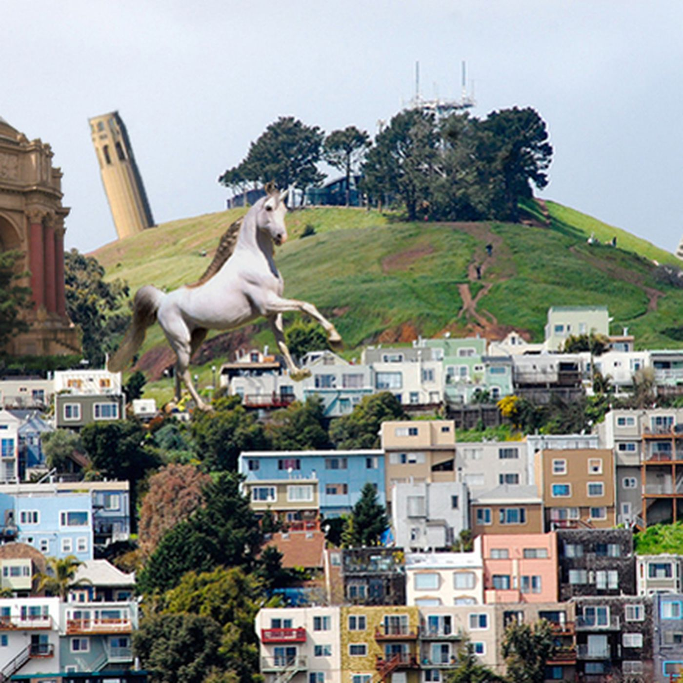 The Curbed Guide to San Francisco Neighborhoods, As Told By Locals - Curbed  SF