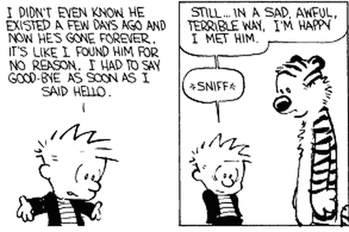 25 great calvin and hobbes strips progressive boink