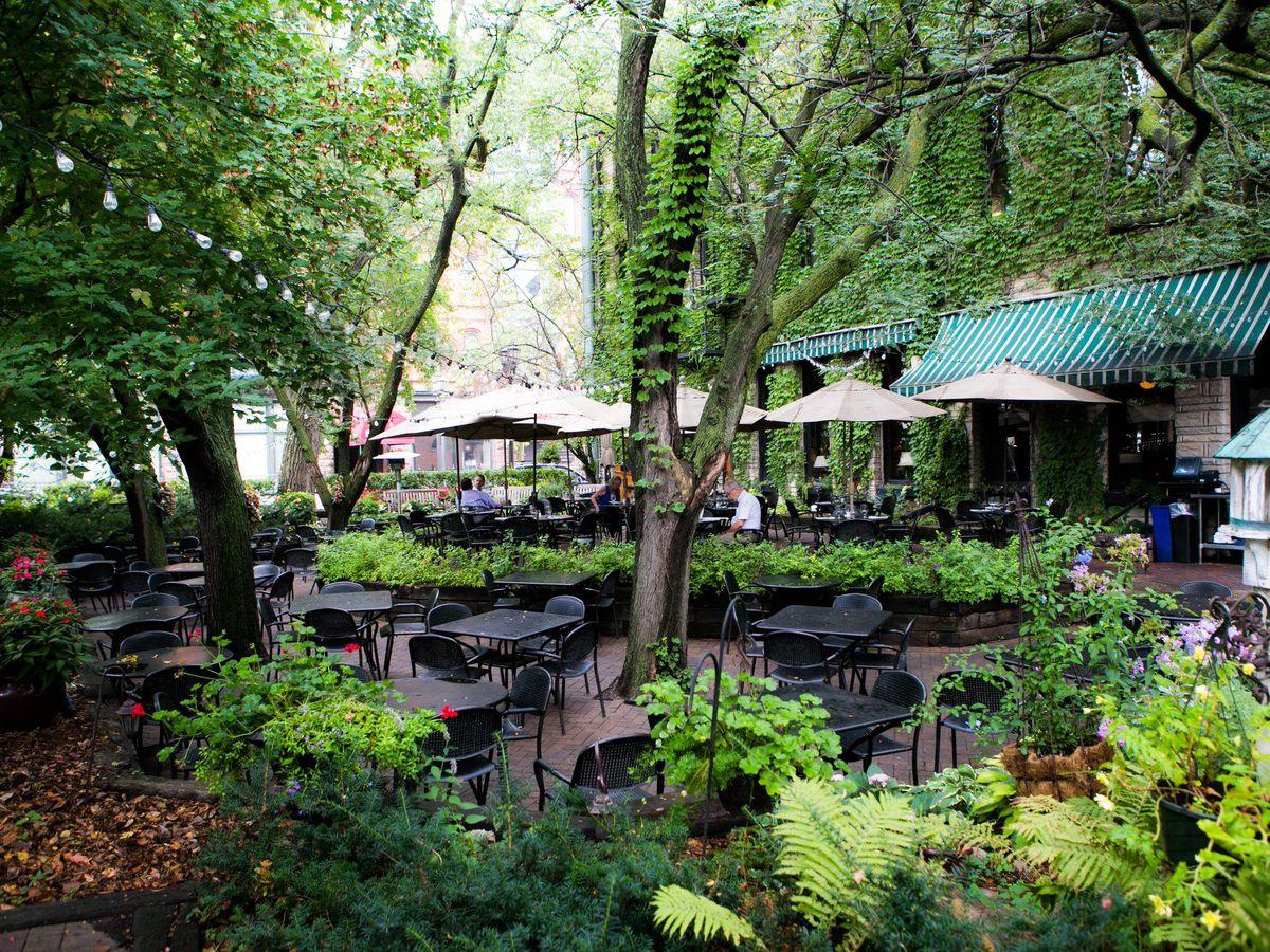 Giant trees shade a cobblestone patio