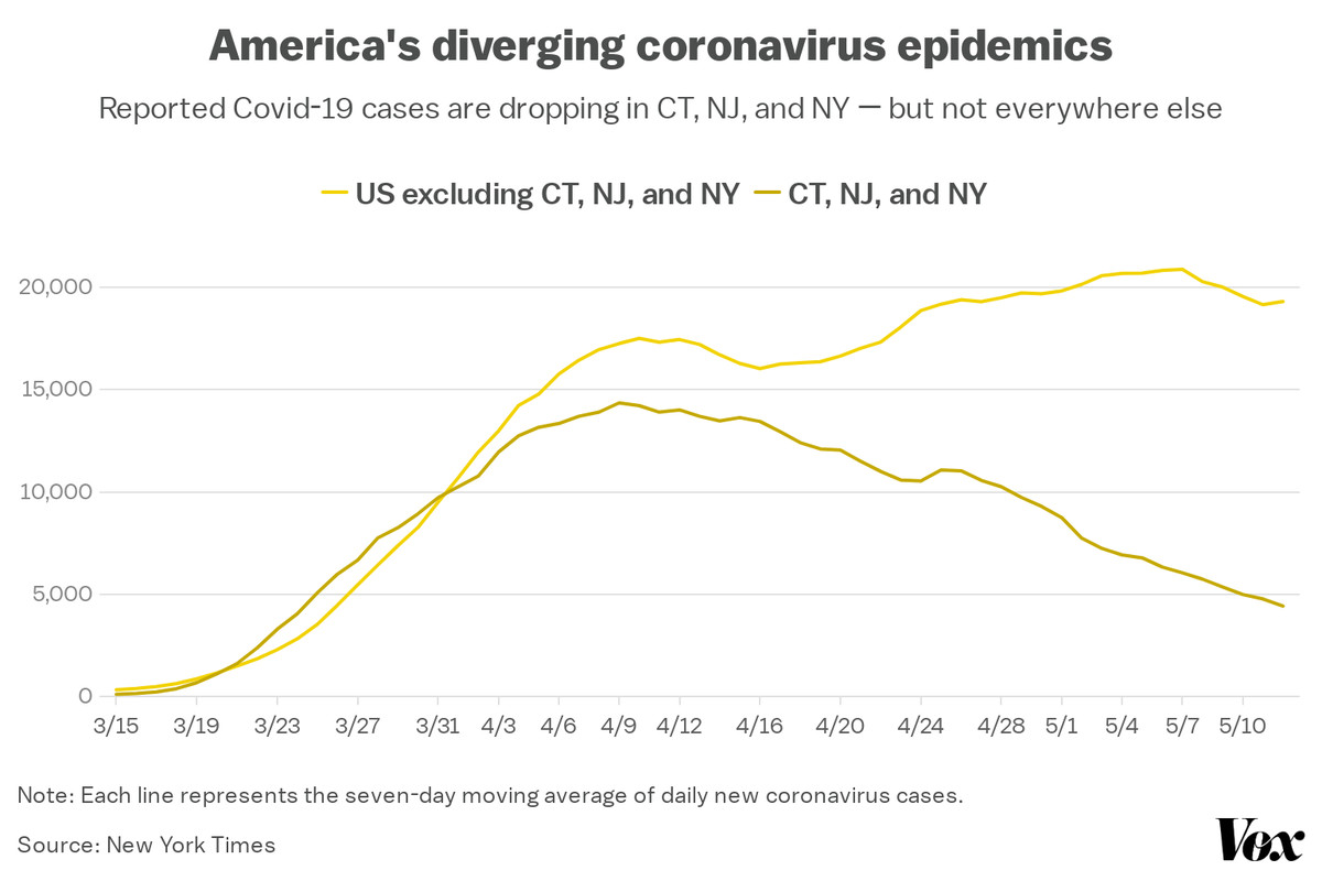 An overview of the diverse coronavirus epidemics in America.