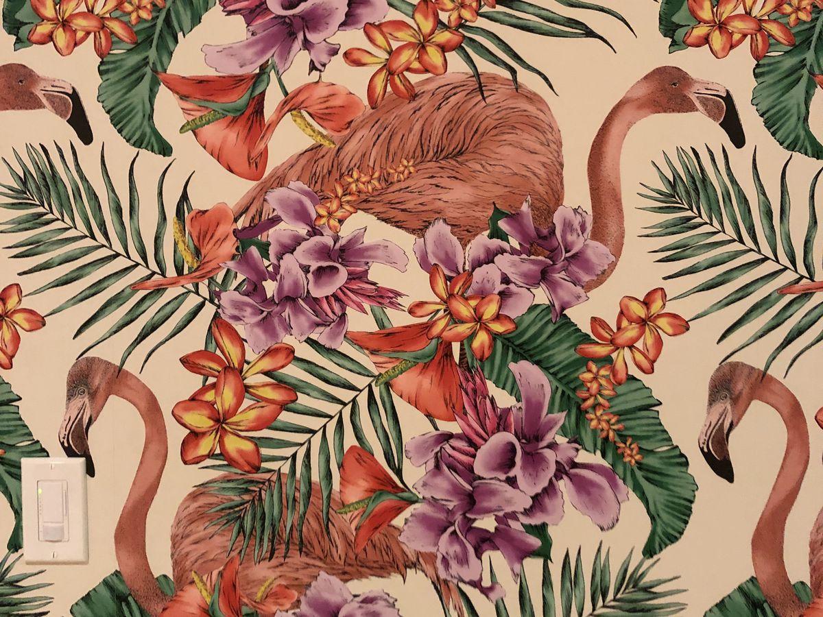 The tropical wallpaper at Suerte