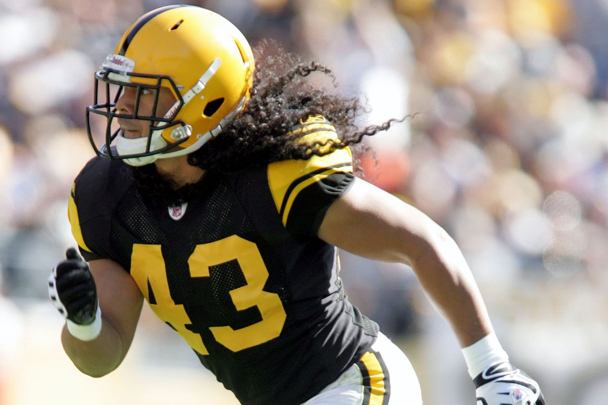 online retailer 27560 60c22 Steelers safety Troy Polamalu was one in a million, both on ...