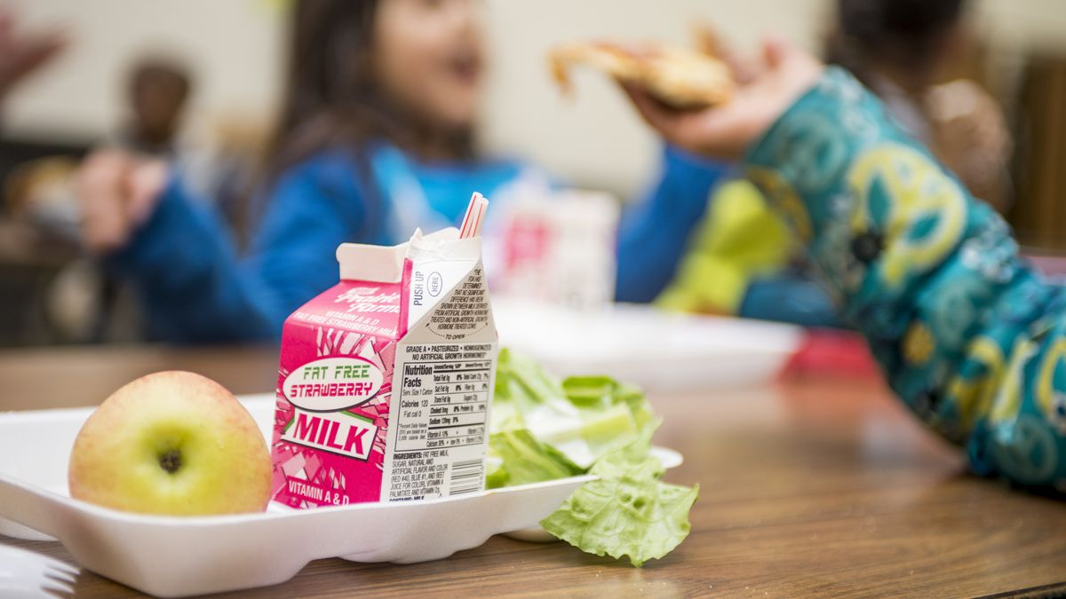 Schools Are Still 'Lunch Shaming' Kids With Meal Debt - Eater