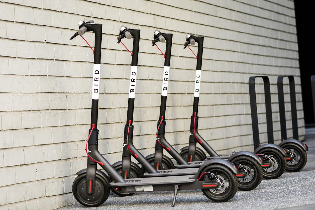 bird the dockless scooter sharing startup is looking for. Black Bedroom Furniture Sets. Home Design Ideas
