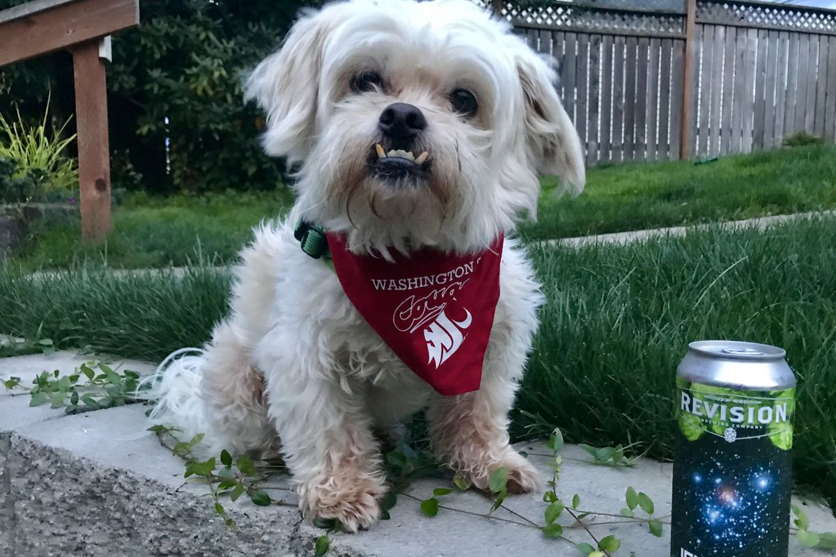 No. 20 WSU vs. Houston: Baxter's beer for the Cougs vs. Coogs