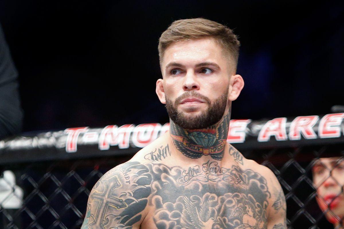 UFC 202: Garbrandt v Mizugaki
