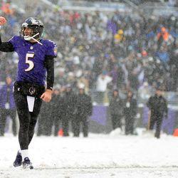 Joe Flacco of the Ravens