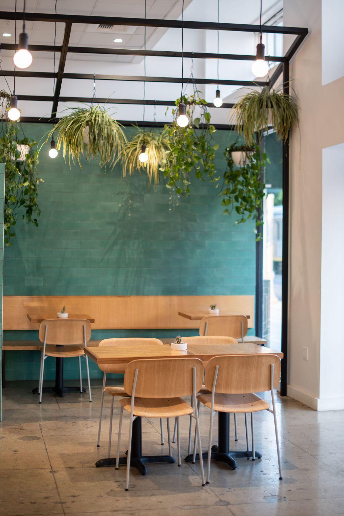 A medium green dining room with shiny tile and lots of hanging plants and blonde wood table.