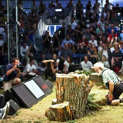 Forager Roland Rittman kneels before wood sorrel