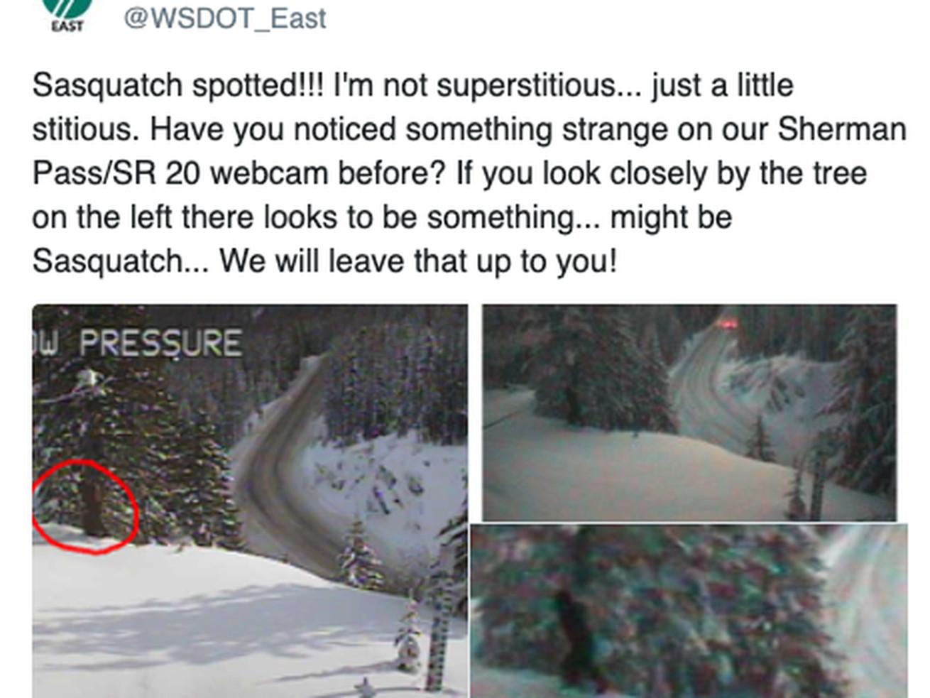 Did Washington state just spot Bigfoot?