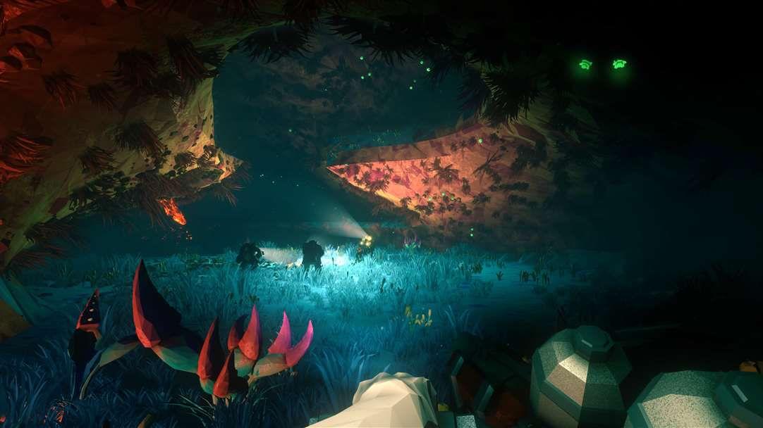 A massive underground cavern illuminated by bioluminescent ferns.