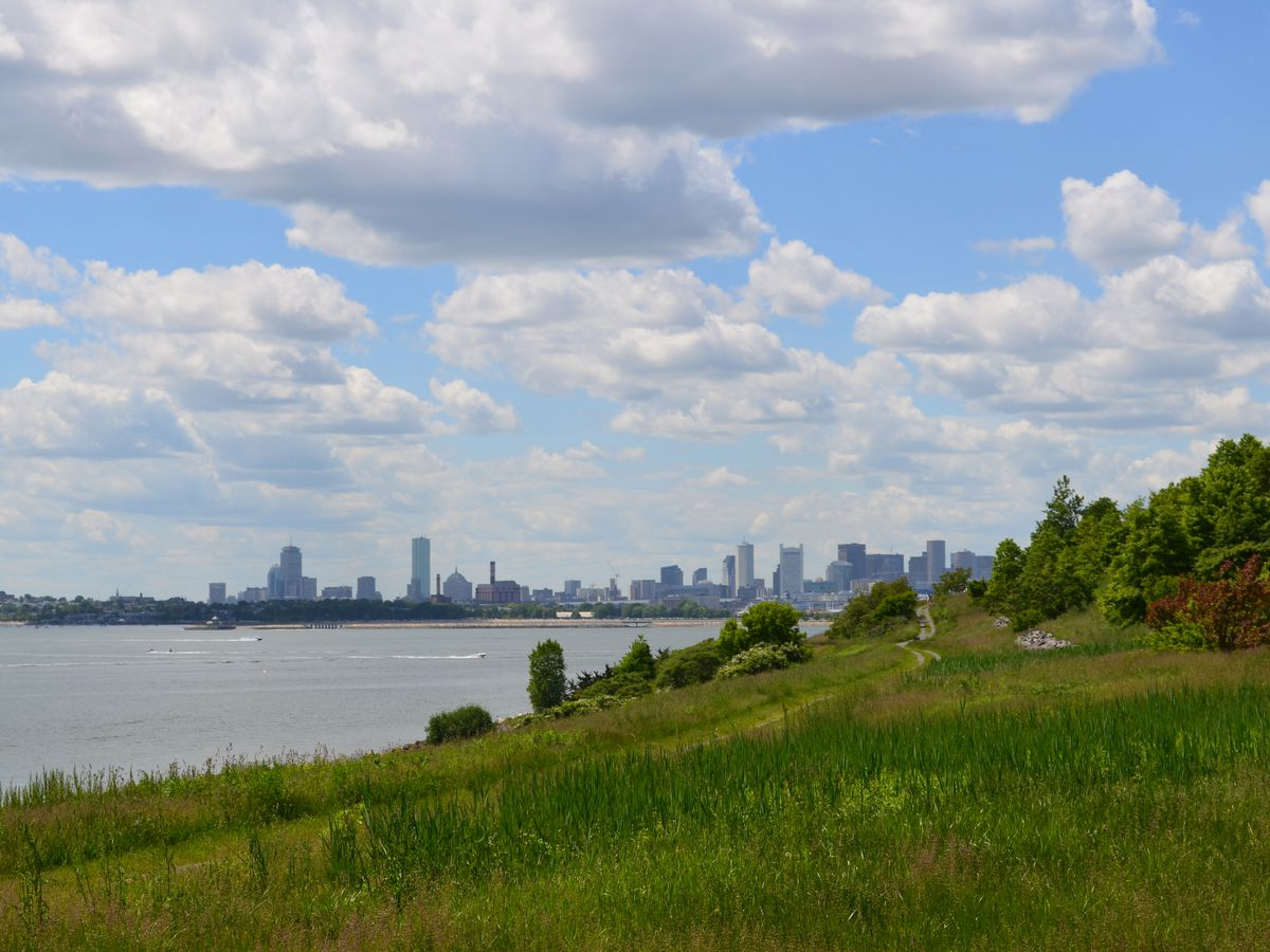 In the foreground is a large expanse of grass alongside a body of water. In the distance is a city skyline with various tall buildings.