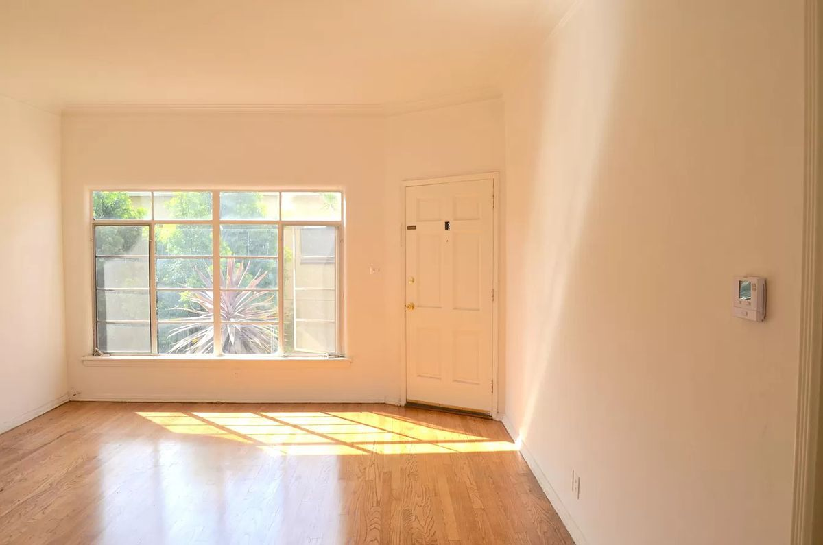 A room with white walls and hardwood floors, with light coming in through wide window panels