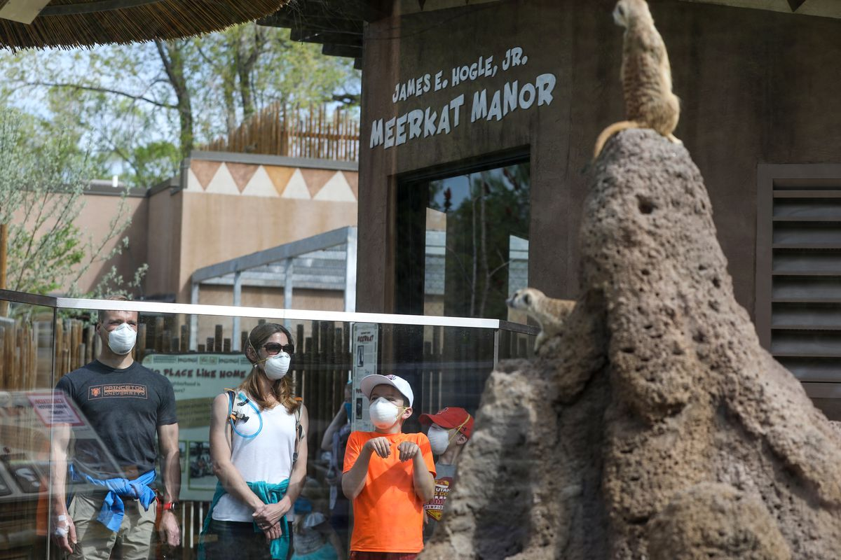 Shay Mahan, 11, mimics a meerkat on a visit to the Hogle Zoo with his parents Mark Mahan and Stacey Mahan and his brother Wesley Mahan, 10, in Salt Lake City on Saturday