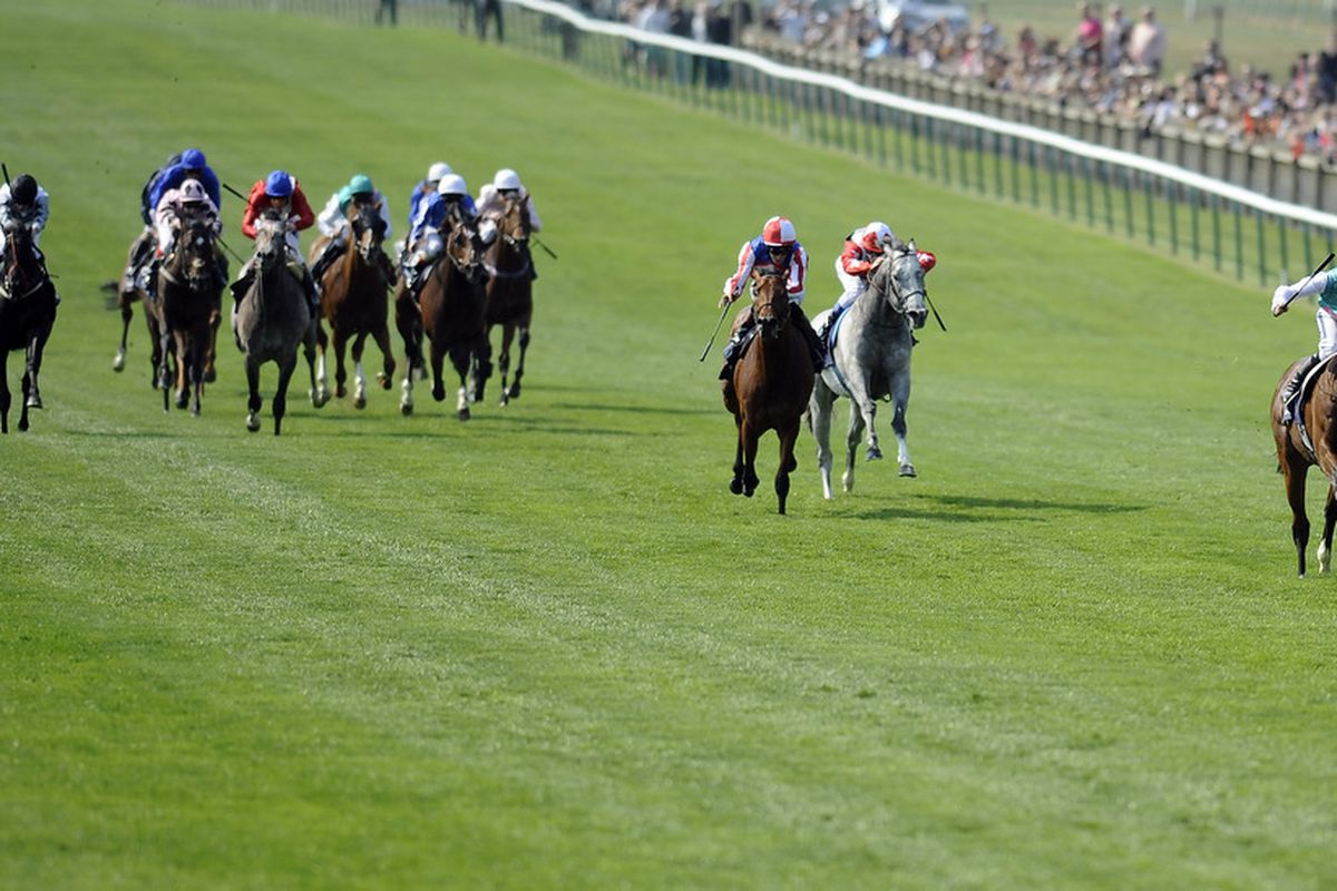 NEWMARKET, ENGLAND - APRIL 30: Tom Queally riding Frankel easily win the 2000 Guineas at Newmarket racecourse on April 30, 2011 in Newmarket, England. (Photo by Alan Crowhurst/ Getty Images)