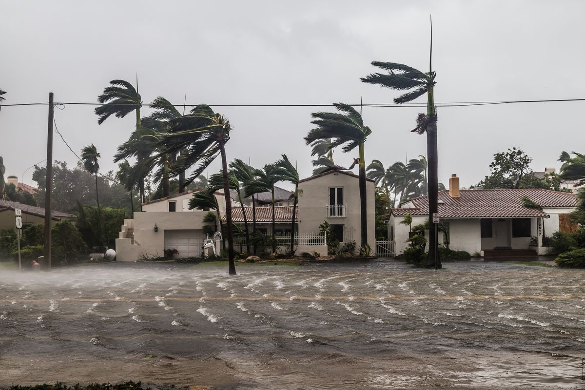 Palm trees strain against the winds of a serious storm as the water ripples in the street in front of a row of homes with Spanish-style roofs.