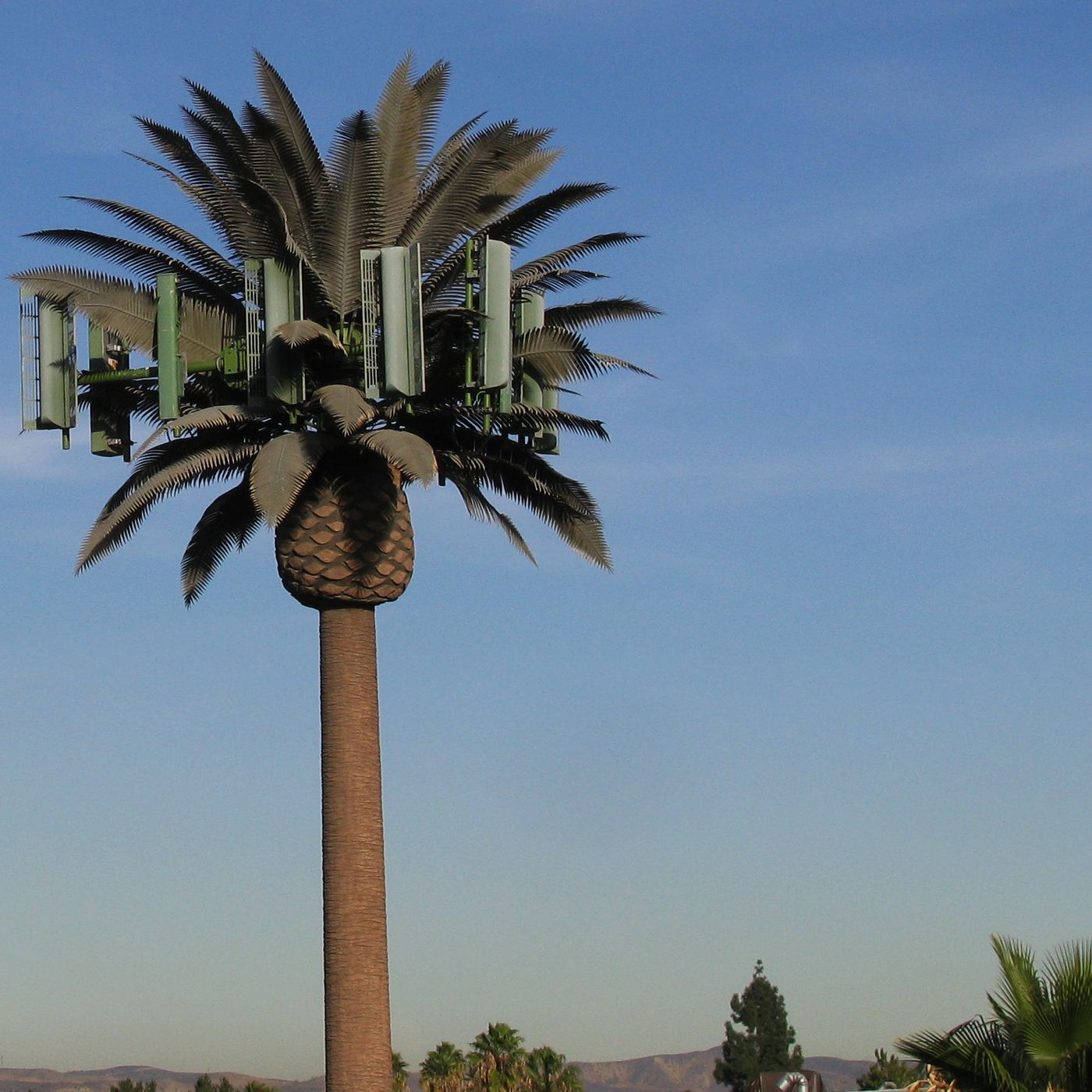 The bizarre history of cellphone towers disguised as trees - Vox