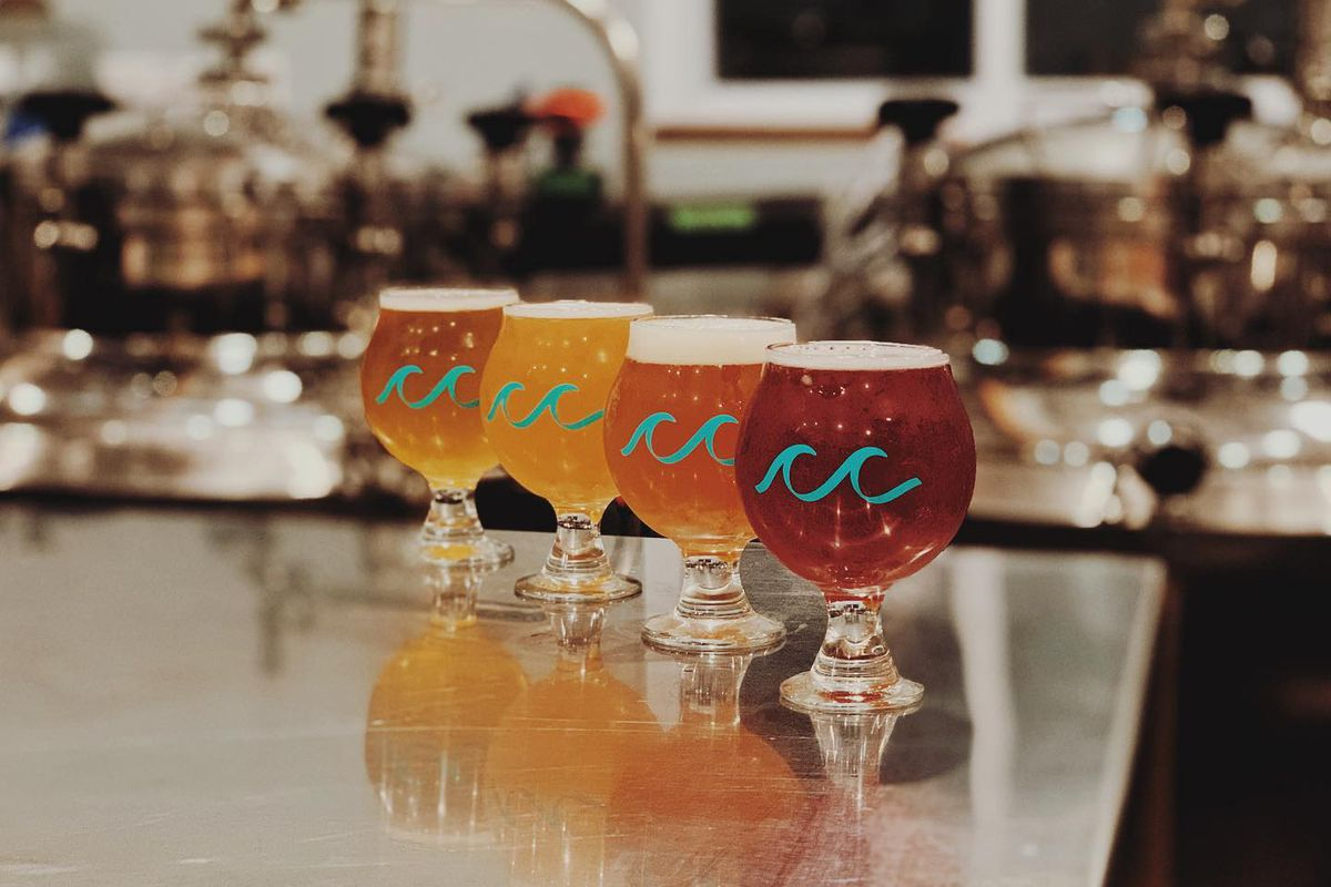 Four beers lined up on a counter, with different colors, at Cold Crash Brewing