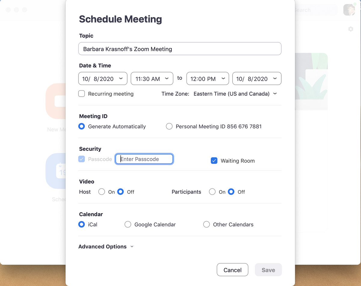 When you schedule a meeting, you get several options for security and information.