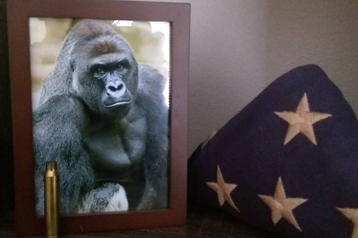 358f9a3e1c3eff The Harambe meme is still going strong. And it s about a lot more ...