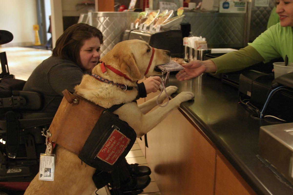 SLUG: KD-DOG DATE: January 11, 2007 CREDIT: Carol Guzy/ TWP.