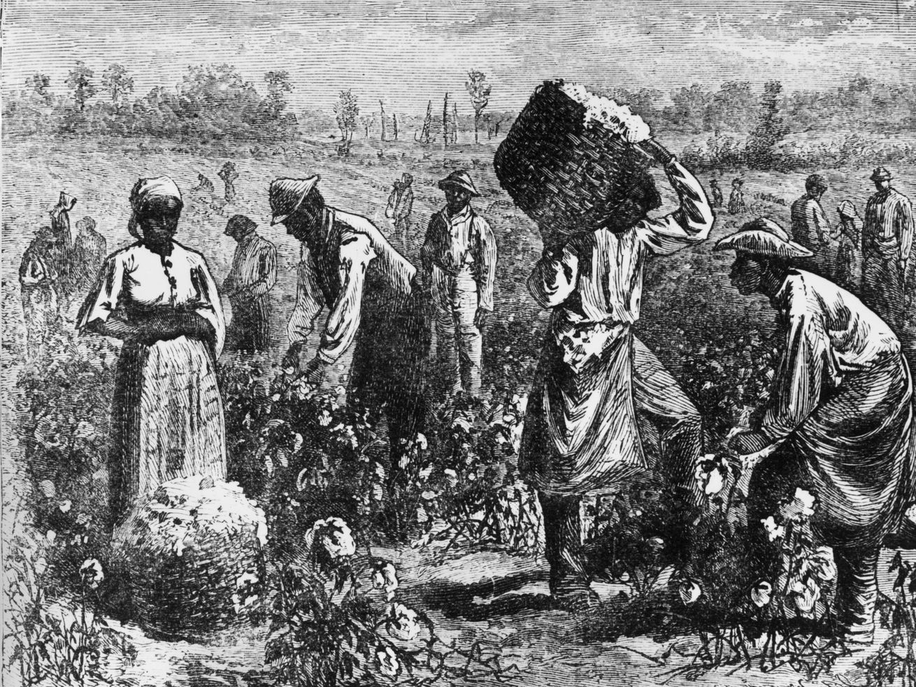 An etching of slaves picking cotton in a plantation field.