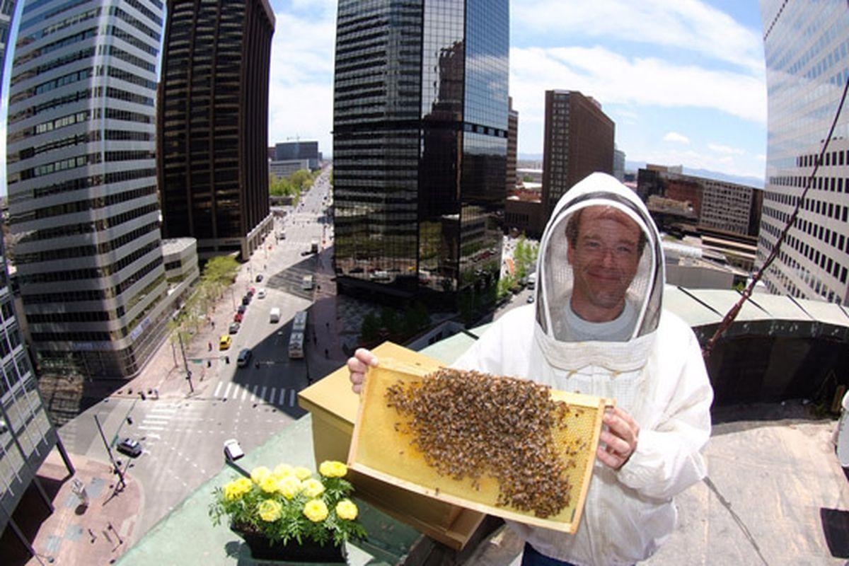 Bees at the Brown Palace