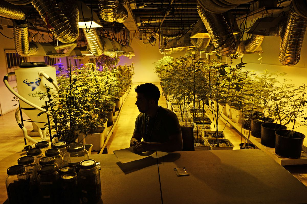 A marijuana dispensary prepares for the launch of recreational sales in Colorado.