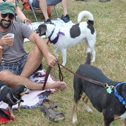 NOLA Brewing brewer Indy Grap relaxing with dogs and beer