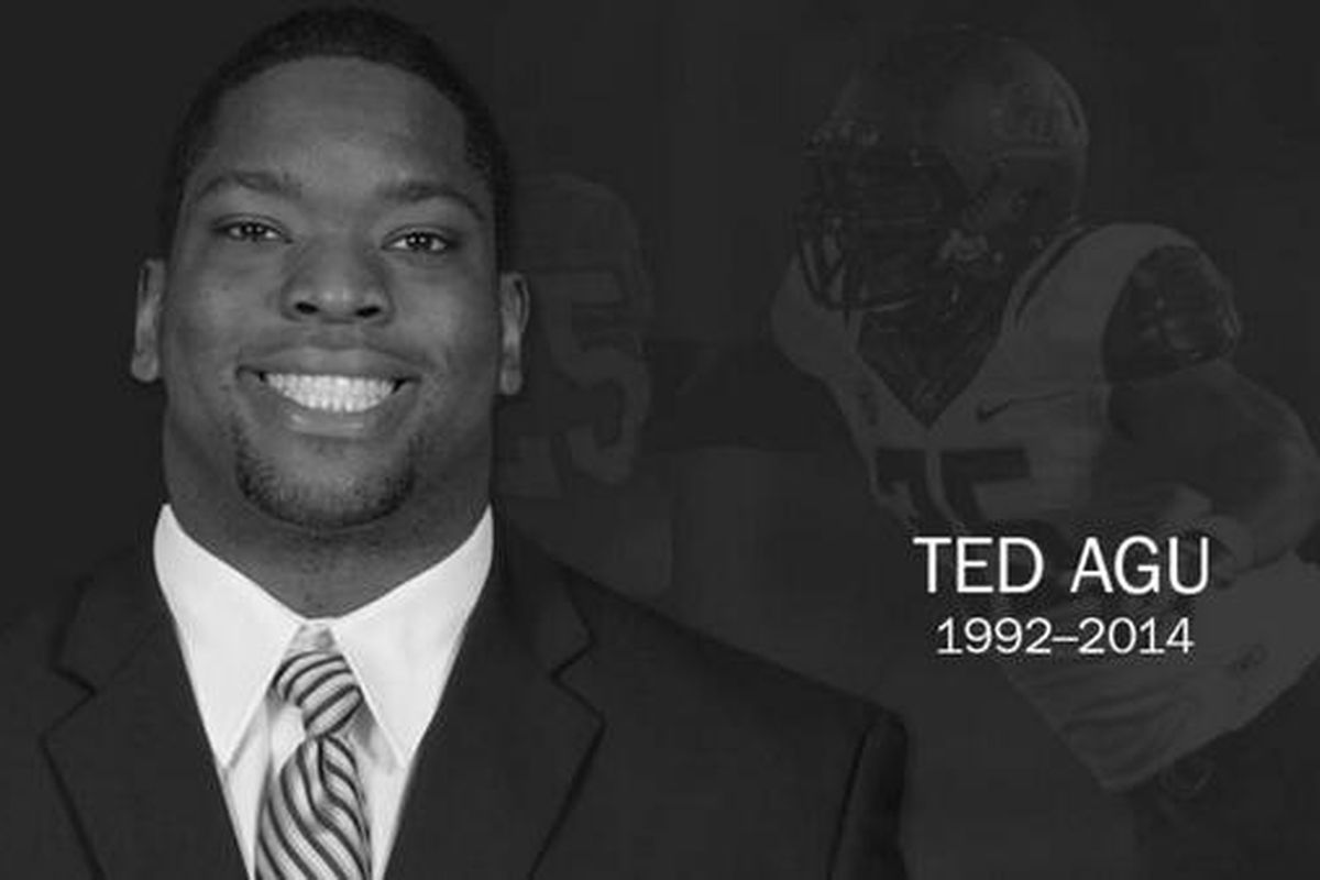 Ted Agu, 1992-2014