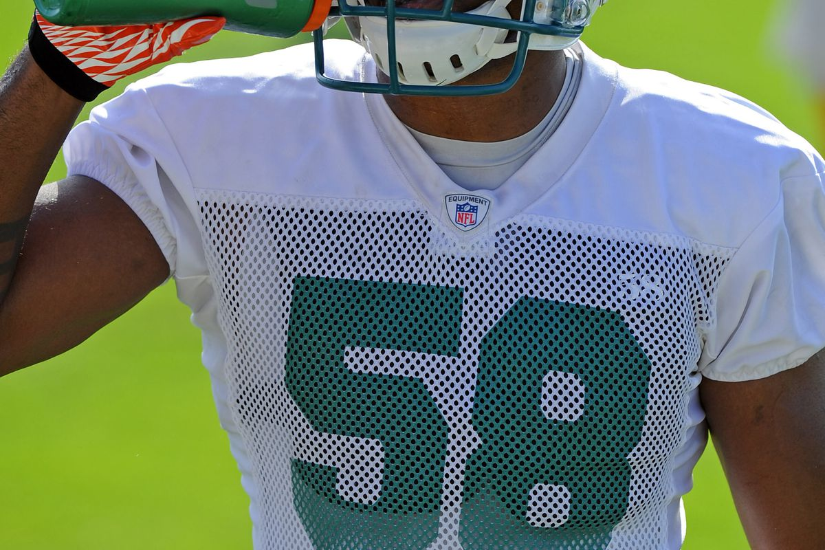 Miami Dolphins linebacker Karlos Dansby disagrees with the team releasing wide receiver Chad Johnson over the weekend.