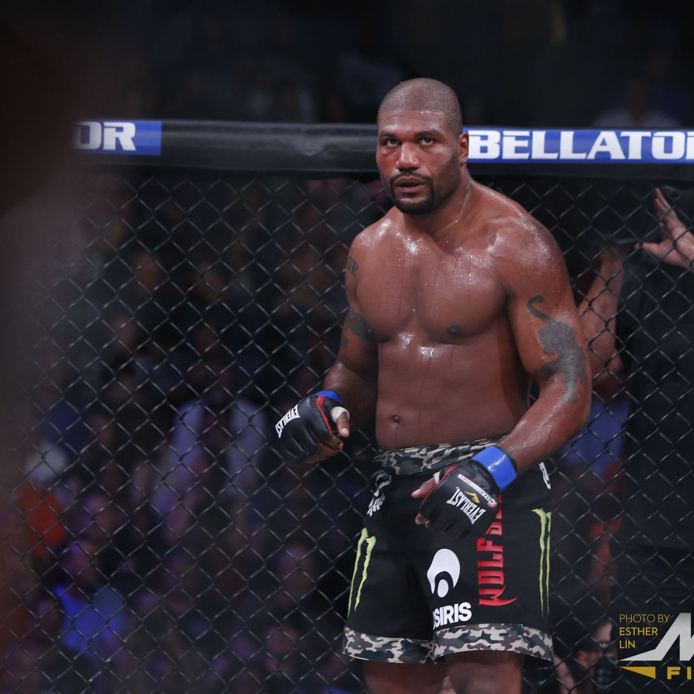 Rampage Jackson Reacts To Bellator Mma Return Still Open To