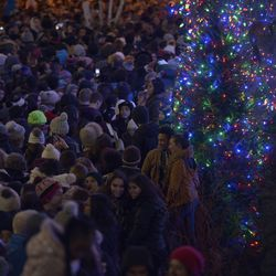 Crowds watch the Christmas tree lighting ceremony in Millennium Park | Victor Hilitski/For the Sun-Times