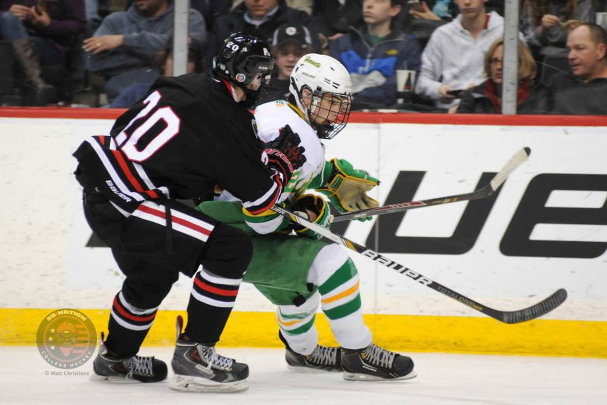 Lakeville North's Jack McNeely checks an Edina play in last year's State Tournament championship game