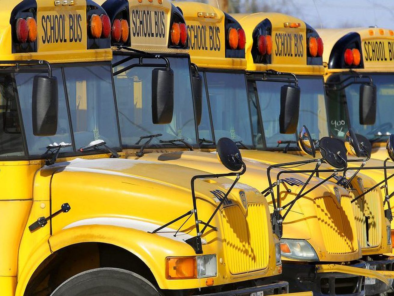 A fleet of yellow school buses