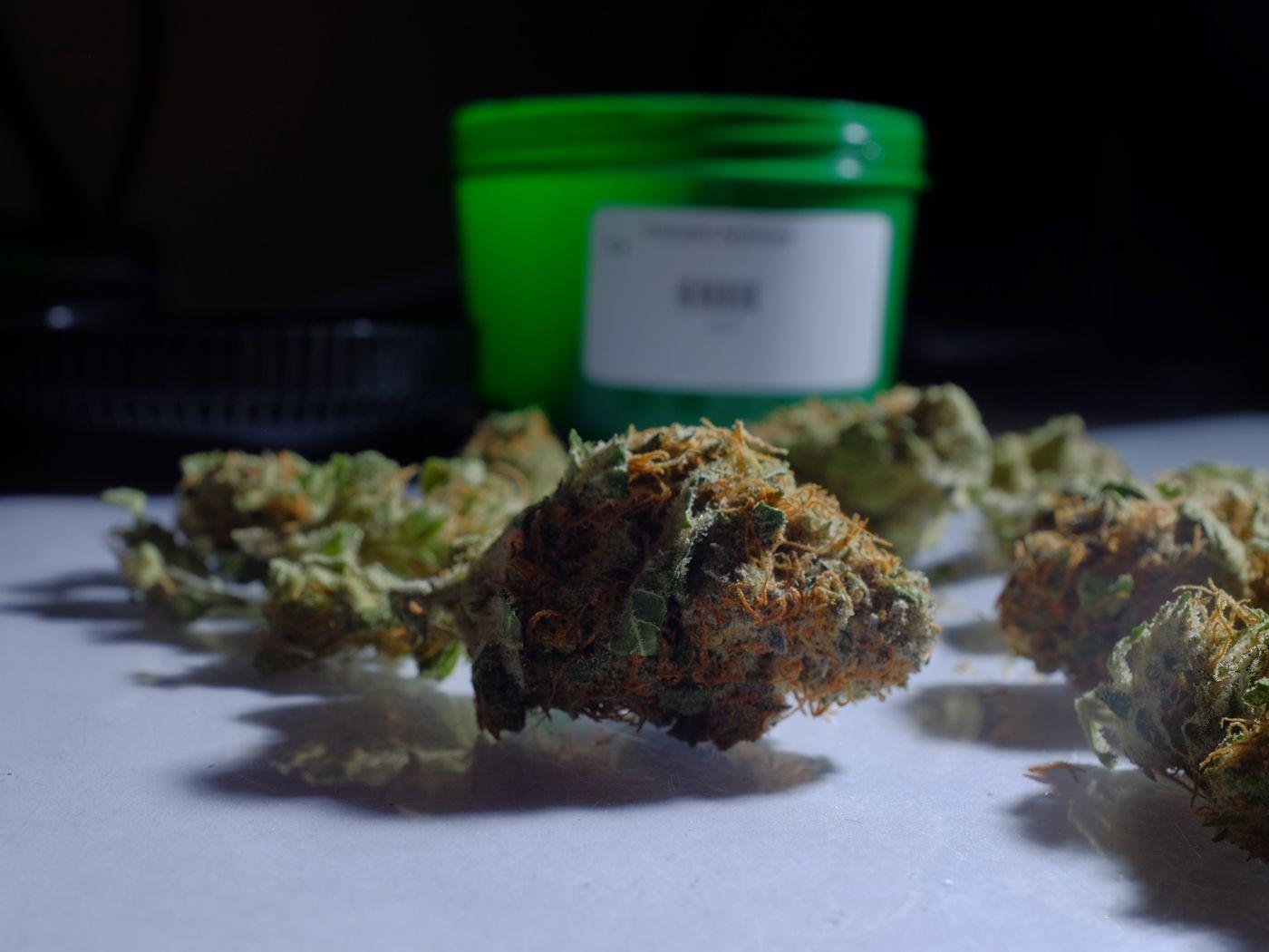 The best argument against marijuana legalization - Vox